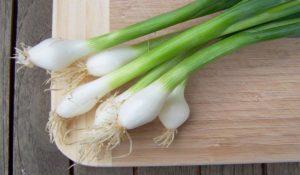 كبسولة البصل الأخضر