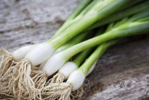 كبسولة البصل الأخضر من موقع كبسولاتي